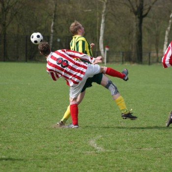 2011 / 4-2 ZBVH thuis