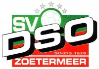 sv DSO D6 (2013/2014)